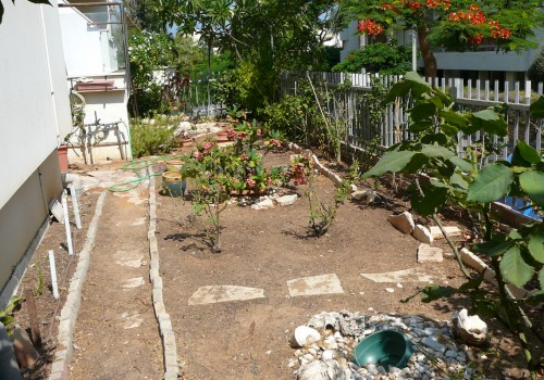 הגינה 1